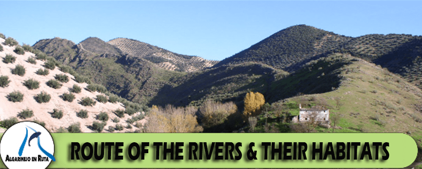 Route of the rivers and their habitats